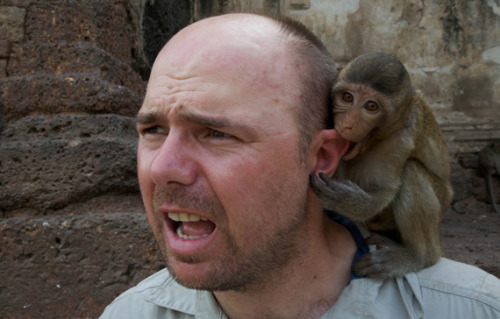 karl pilkington monkey