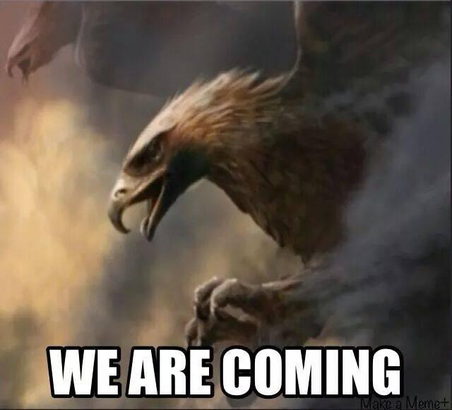 eagles (2).jpg