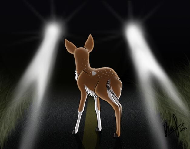 deer_in_the_headlights_by_intellectual panda.png